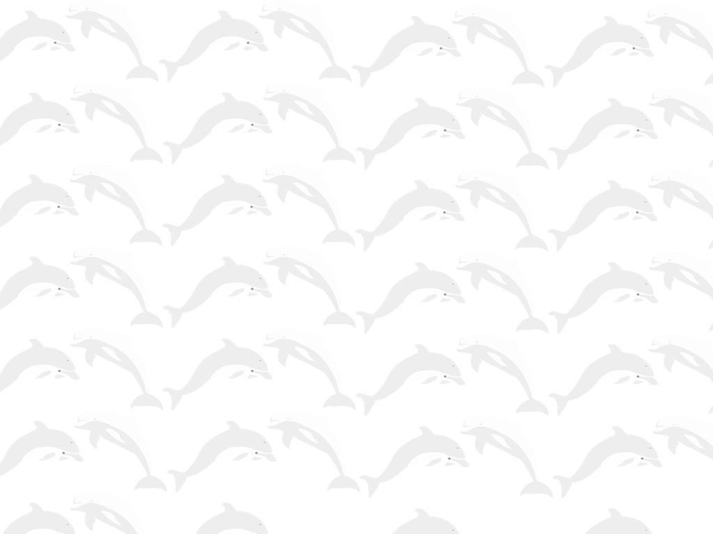Lucky Dolphin on a Silver Coin