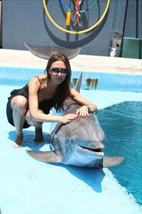 Super Model and Singer Victoria Beckham with a Dolphin