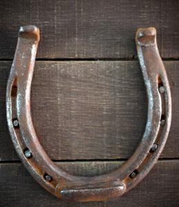 Iron Horseshoe nailed to a Door