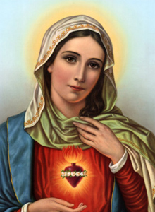 Ladybug Favorite of Virgin Mary